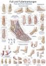 Uzskates materiāls - Pēda un pēdas slimības
